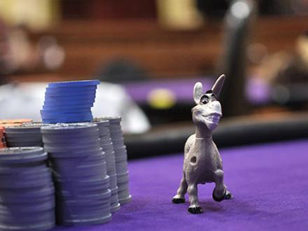 donkey, principianti del poker